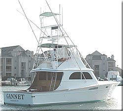The Gannet - Virginia - Carolina Sport Fishing Boat.