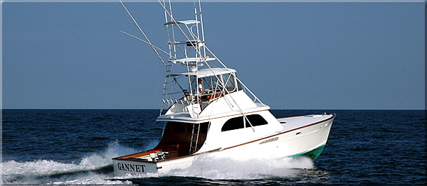 Virginia Sport Fishing Boat - The Waterman