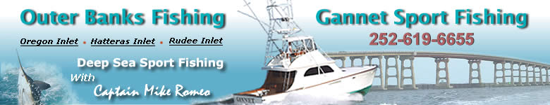 Virginia Beach Sport Fishing Charters