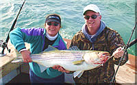 Virginia Beach striper